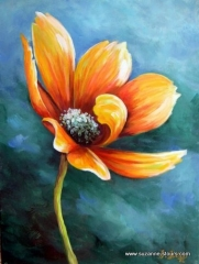 Fleur cosmos s'ouvrant au soleil