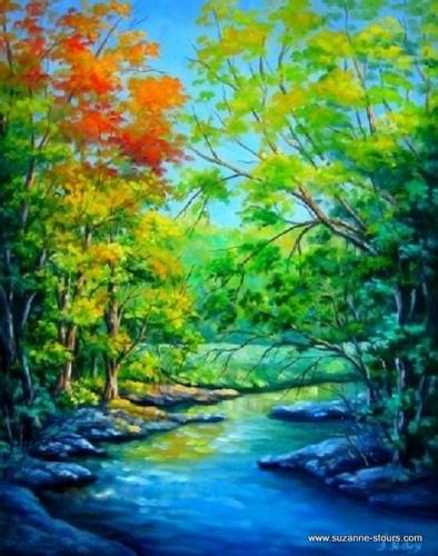Ruisseau Lac Bouchard Parc National de la Mauricie